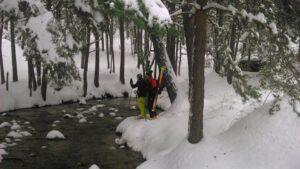 Pinar de valsain nevado