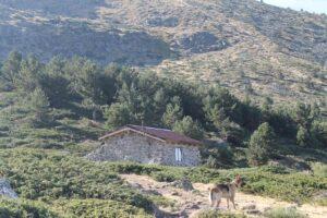 Refugio. Parque Nacional Sierra del Guadarrama